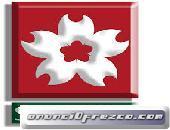SERVICIO TECNICO ESPECIALIZAD  CALENTADORES SAKURA 3115414268