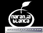 clases de piano - escuela de música Naranja Blanca 3
