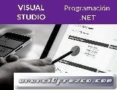 Programación Visual .NET