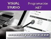 Programación Visual .NET
