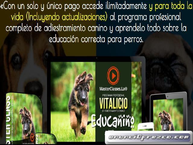 Adiestramiento Canino. Educanino
