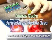 Verdaderas células Madre Artrosis Colombia