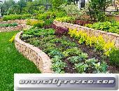 servicio de jardineria,servicios de jardineria